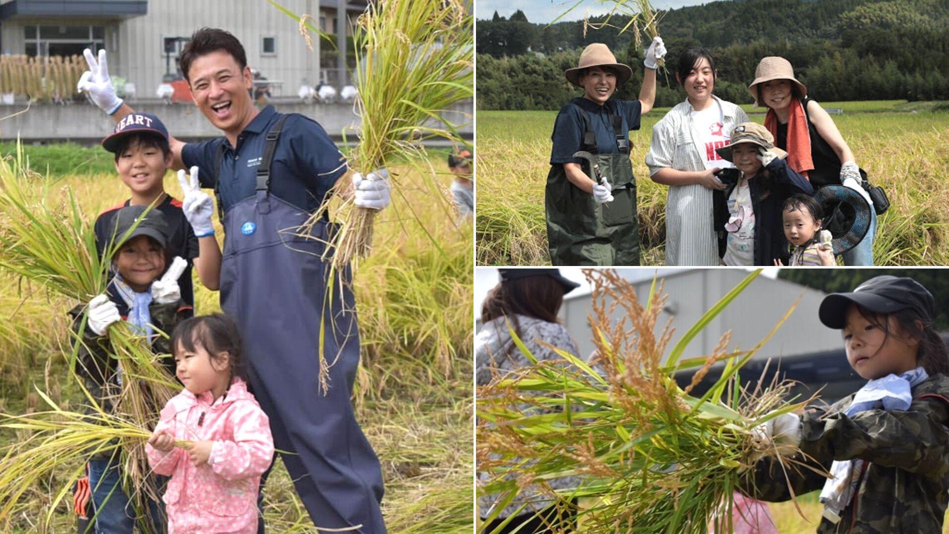 PREMIUM WATER 熊本復興イベント稲刈り体験2018